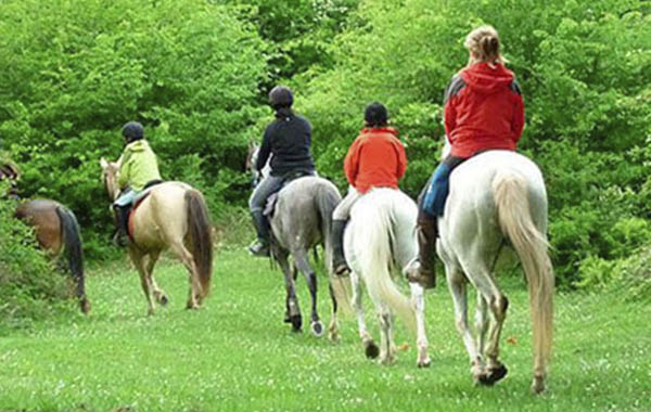 rutas a caballo, peñafiel, ribera del duero, actividades, naturaleza, familias, bungalow, bungalo, camping, valladolid, duraton